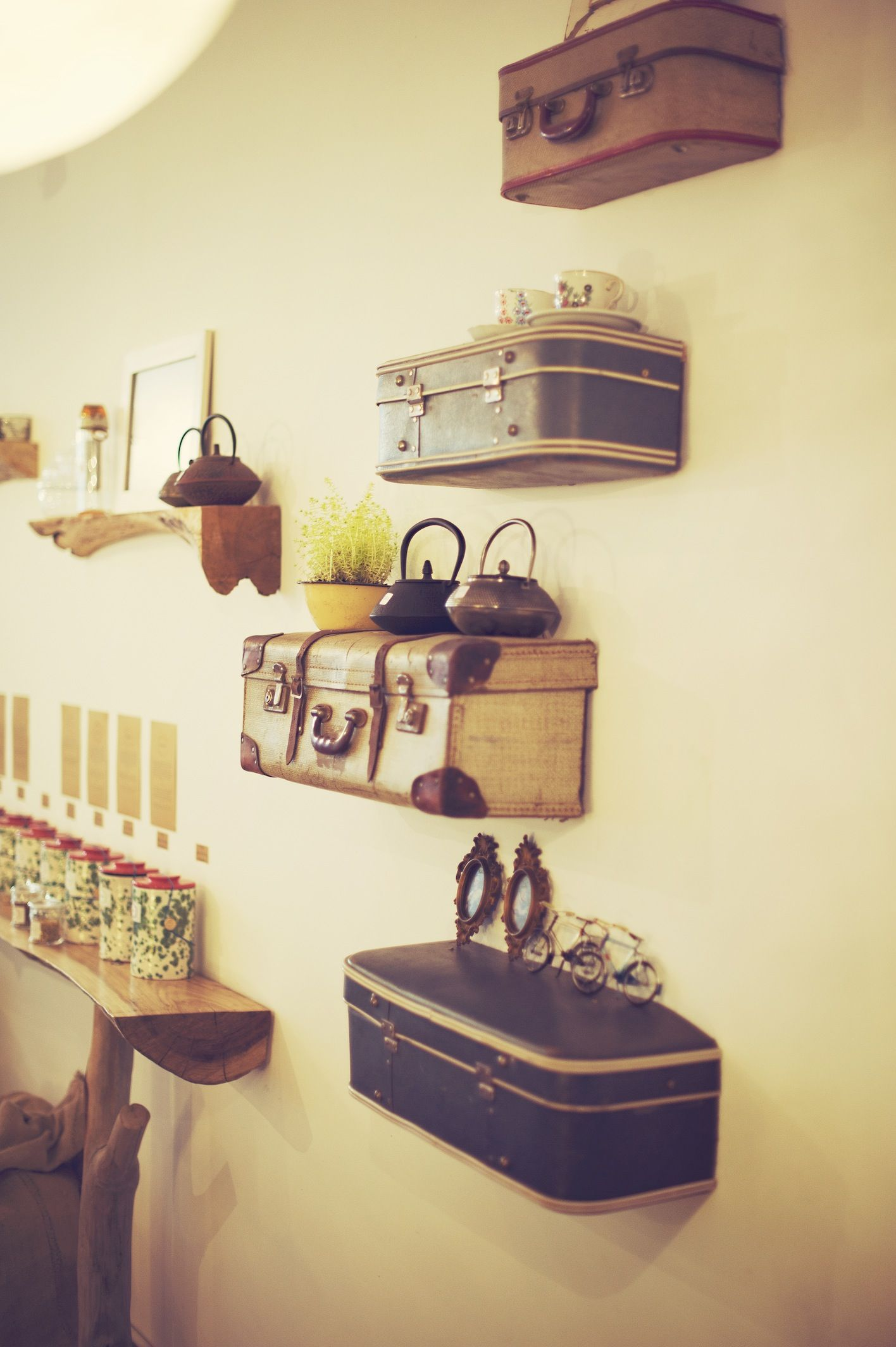 Case Shelves - Perfect For Display Jewellery, No