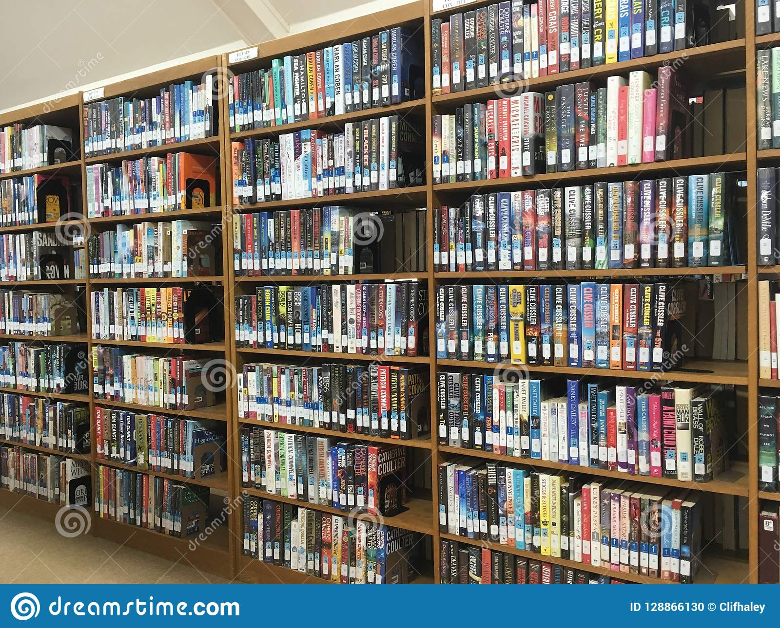 Library Books On Shelves Stock Photo Image Of Reading - 128866130