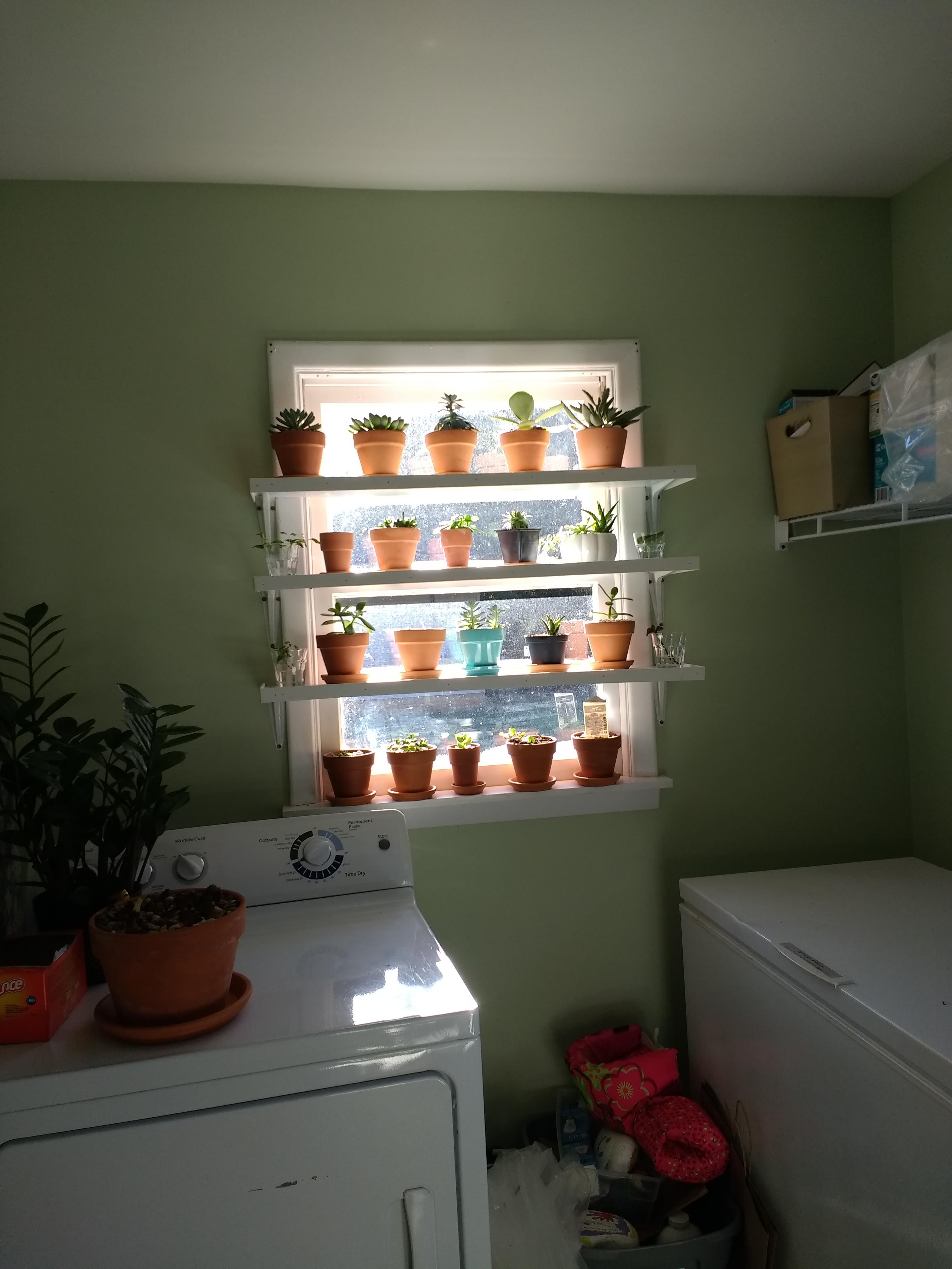 My Husband Loves Me These Shelves Are My Birthday Gift