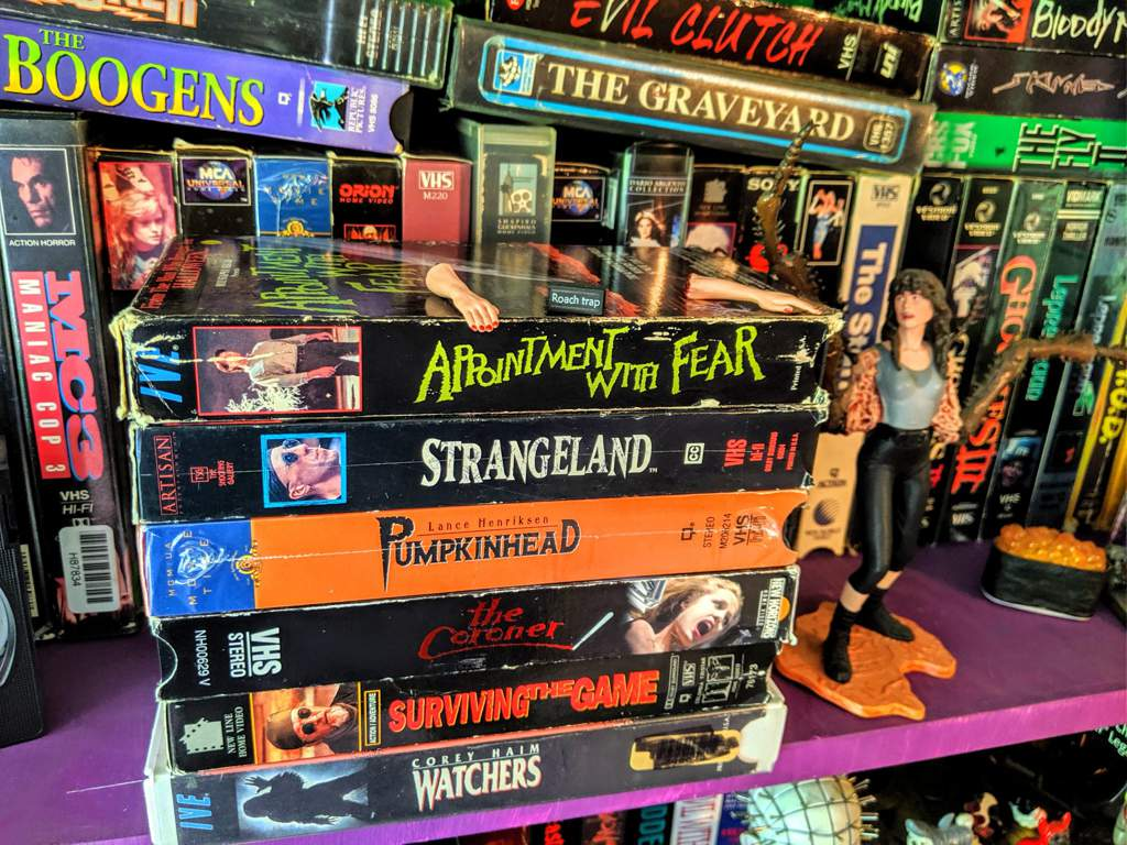 � More New Tapes Plus Updated Shelves � | Horror Amino