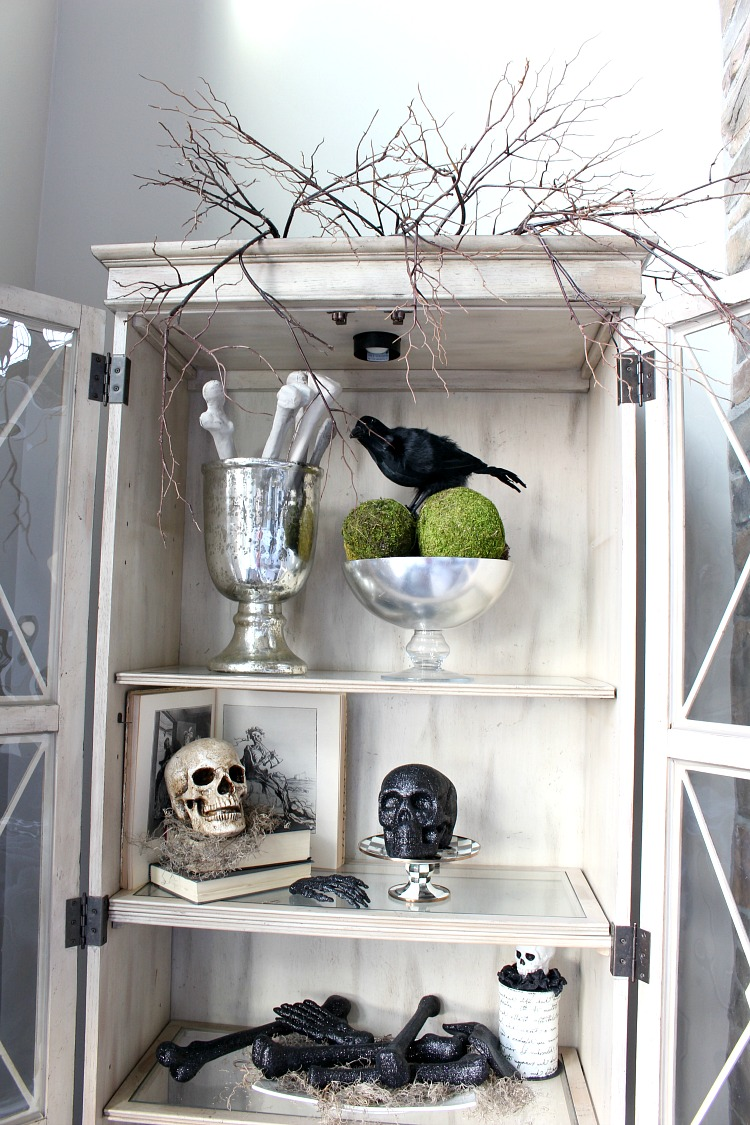 Halloween Styled Shelves Of Curiosities - The House Of