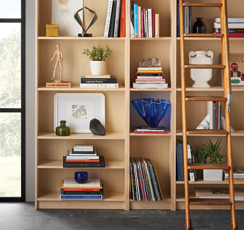 Stylish Book Shelves - Midwest Home