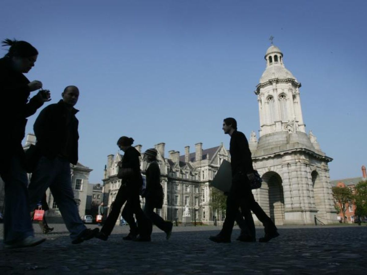 Trinity Shelves Rebrand Plan And Outlines €600m Strategy