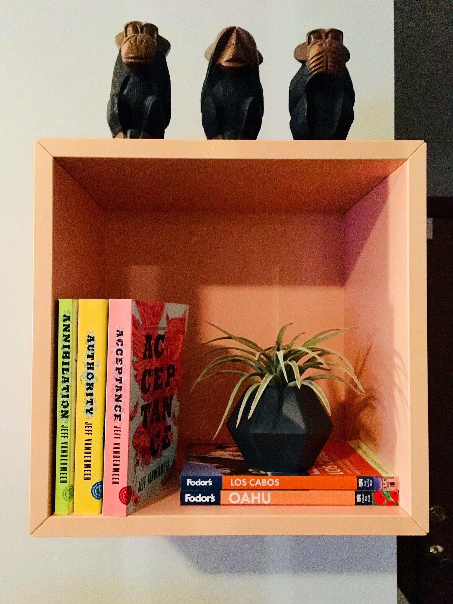 New Shelves Demand New Decor Thrilled To Show Off The