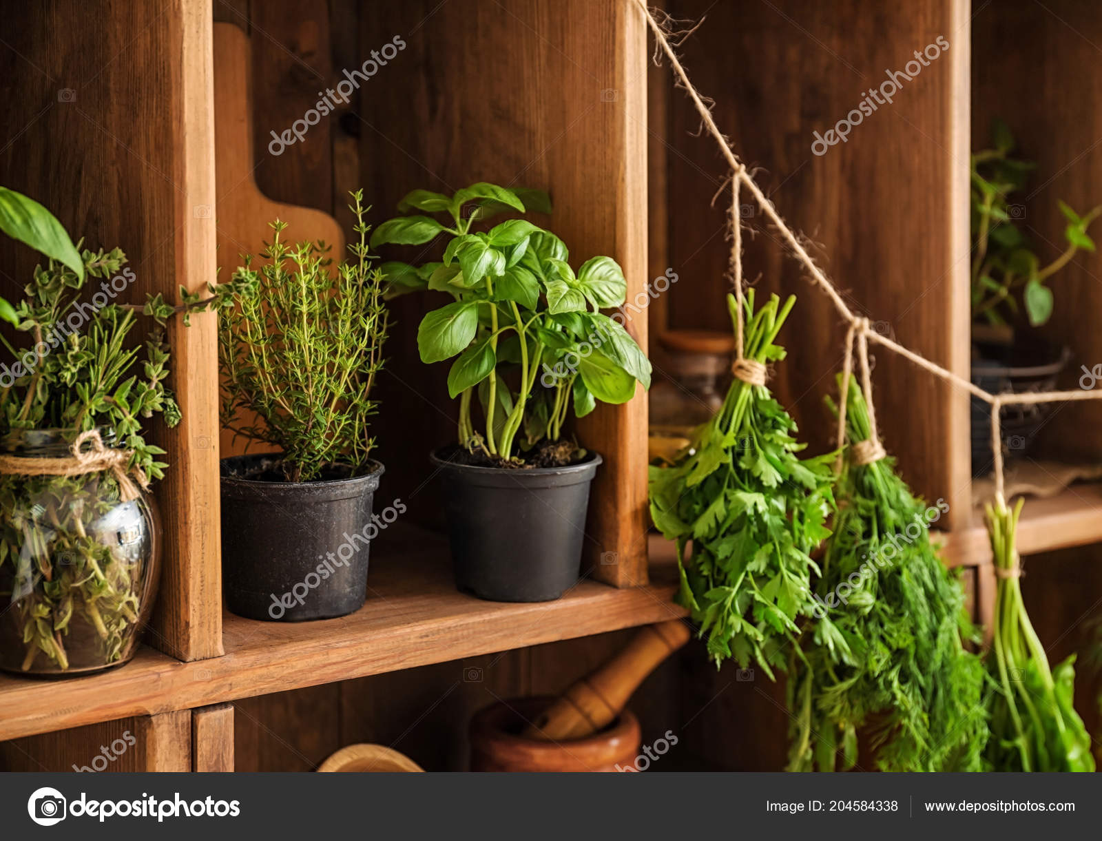 Pots Bunches Fresh Herbs Hanging String Wooden Shelves