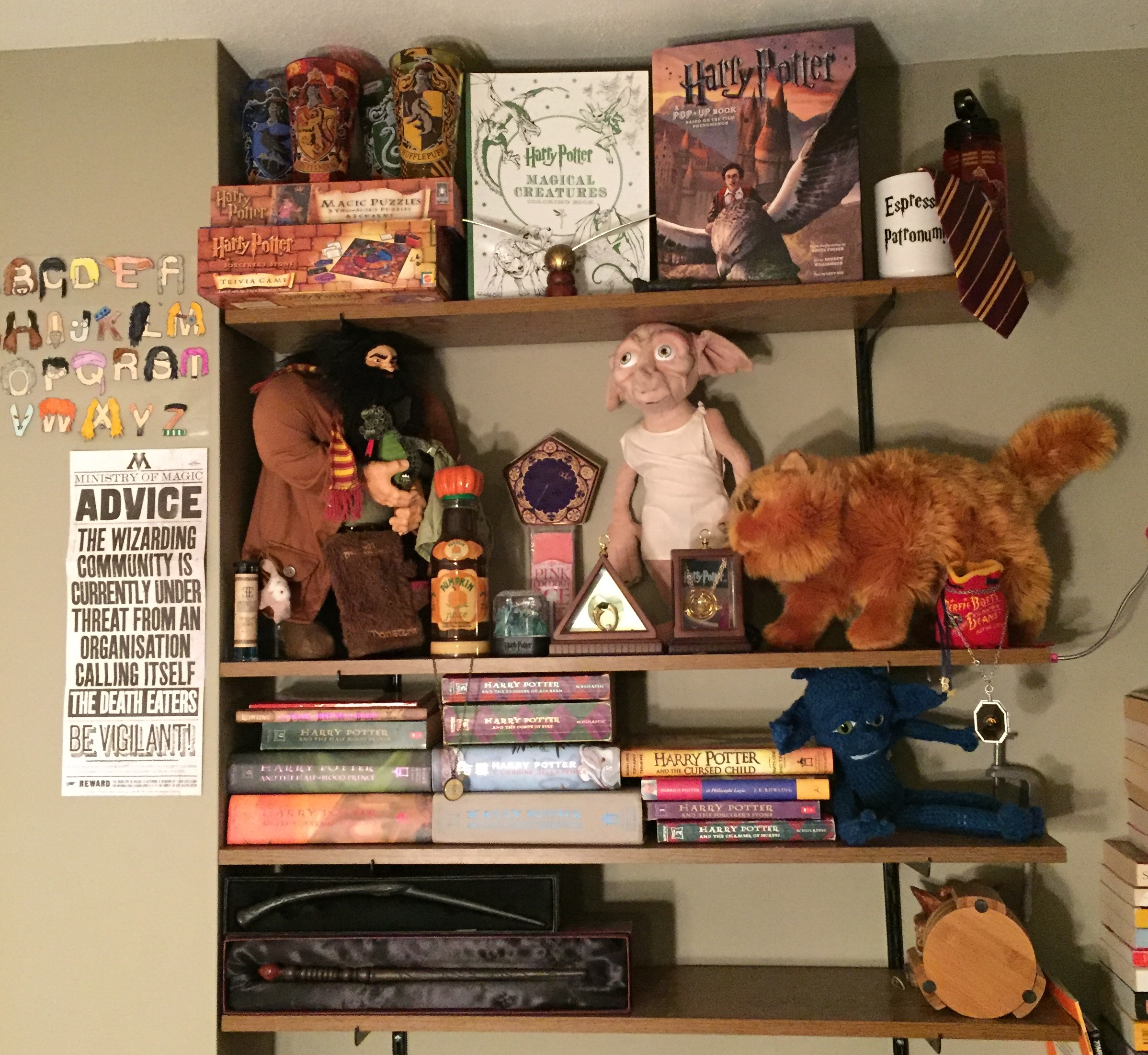 Almost Missed My Cake Day! Check Out My Harry Potter Shelves